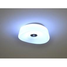 Deckenlampe Blume D1